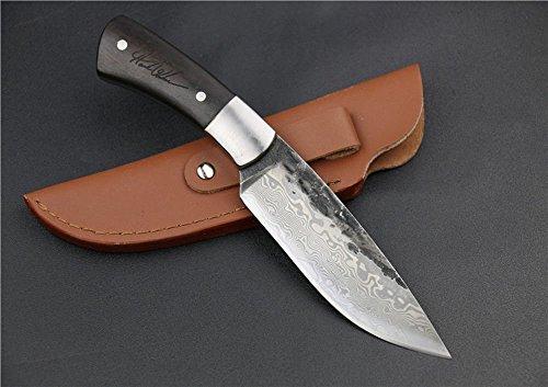 Étui Couteau Regulus Knife promotion 25