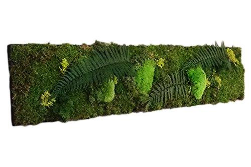 Mur Végétal Extérieur Artificiel ▷ Comparatif - meilleur produit du mois 5
